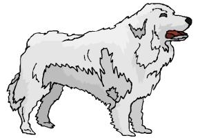 hunde ausmalbilder kostenlos
